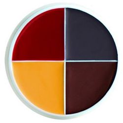 Picture of Bruise & Abrasions F/X Color Wheels