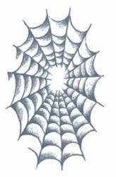 Picture of Prison - Spider Web