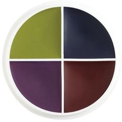 Picture of Bruises F/X Color Wheel