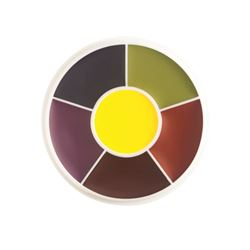 Picture of Master Bruise F/X Color Wheel