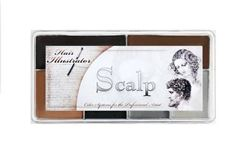Picture of Scalp Palette
