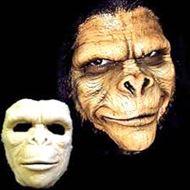 Picture of Ape Foam Appliance