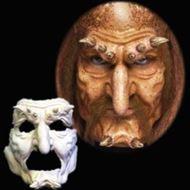 Picture of Hobgoblin - Full Face Foam
