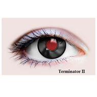 Picture of Terminator