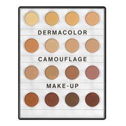 Picture of DermaColor Mini Palette