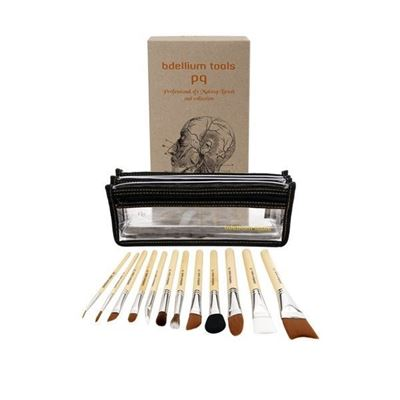 Picture of SFX 12pc Brush Set - 2nd collection