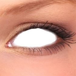 Picture of Sclera Lenses-White Zombie